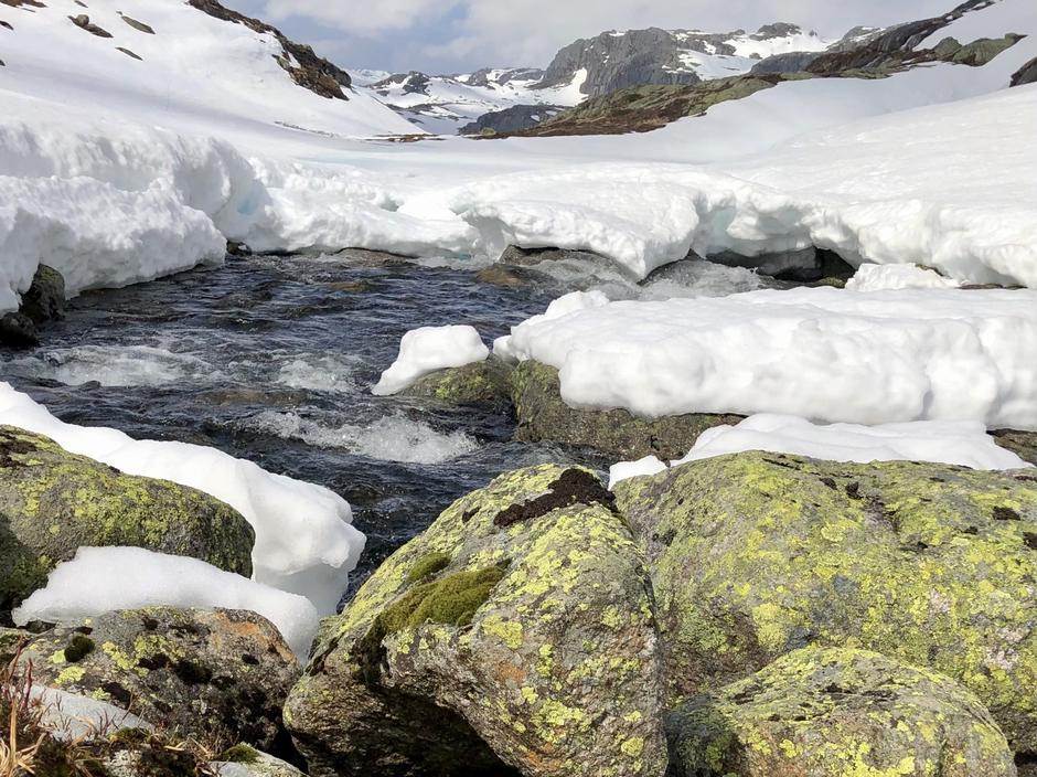 Det renner mye vann fra Blautevatn i bekken mot Mangærnane.