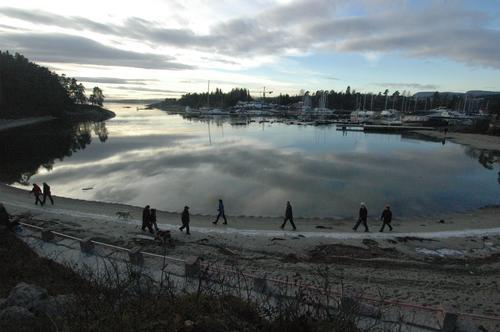 Internasjonal søndagstur til Bygdøy 8. januar