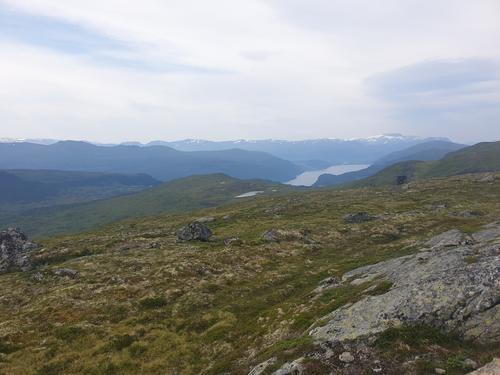 Nordfjorden frå Holmøyskareggja