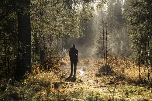 Vi var på vei mot Bjønnåsen i Østmarka fra Losby da vi la merket til dette fine lyset. Min samboer Axel Pettersen lot seg avbilde i høstmagien - og utsikten fra Bjønnåsen var flott! (november 2015)