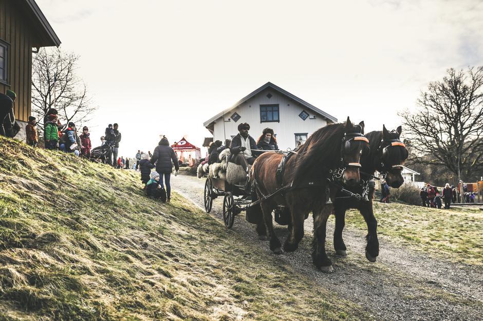 På Breivoll gård kunne Kom deg ut-deltagerne teste hest og kjerre.