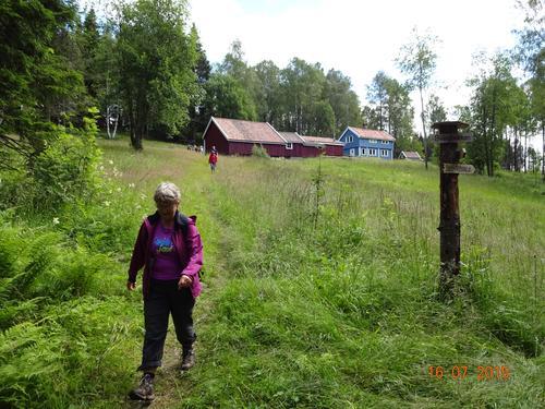 Tirsdagens kveldstur går via Svingbakken og Laskerud