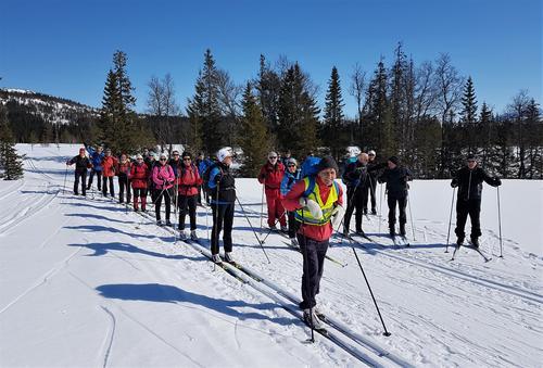 Skitur til Branokhytta, Veteranan Innherred