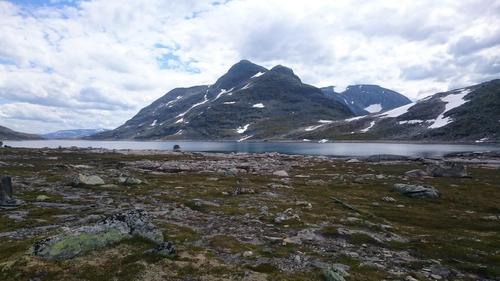 Kringlehøa fra nordvest