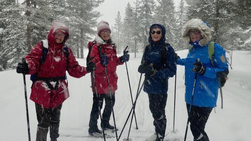 Skitur ved Vollkoia og til Blåmyrkoia 13.03.2019.