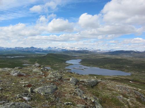 Fra Kjølafjellet mot nørre Kjølen og Jotunheimen