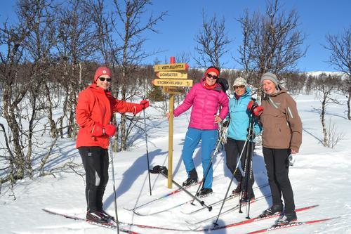 Bedre forbindelse på ski mellom Vestfjellhytta og Liomseter