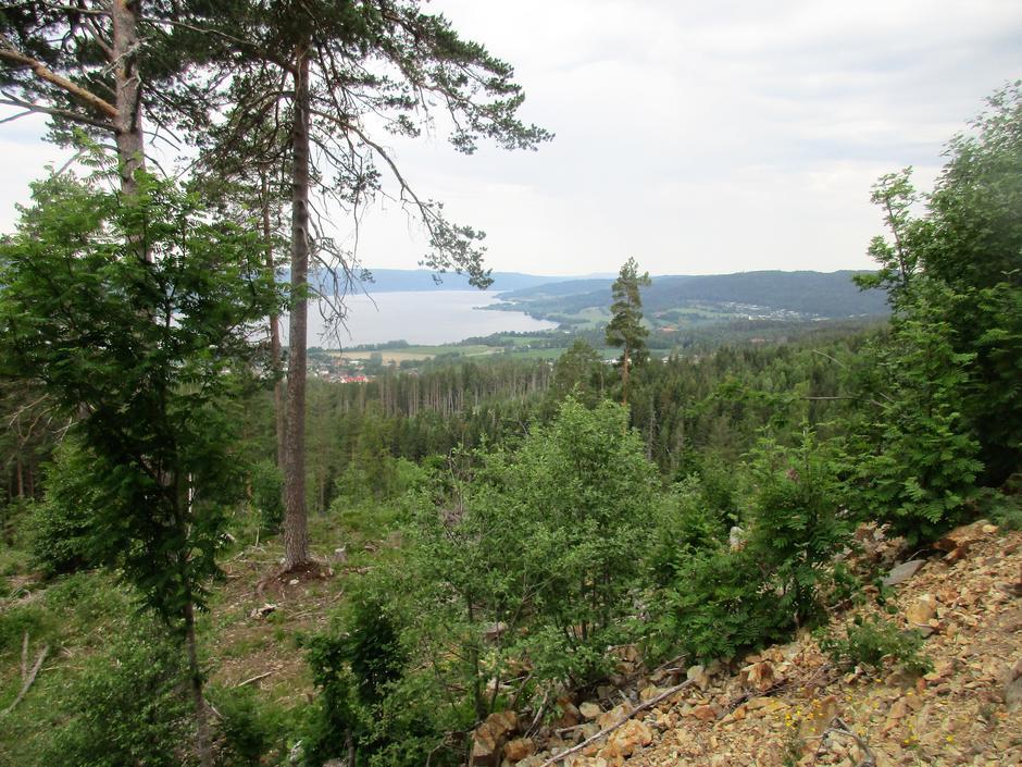 Randsfjorden og Prestmoen.