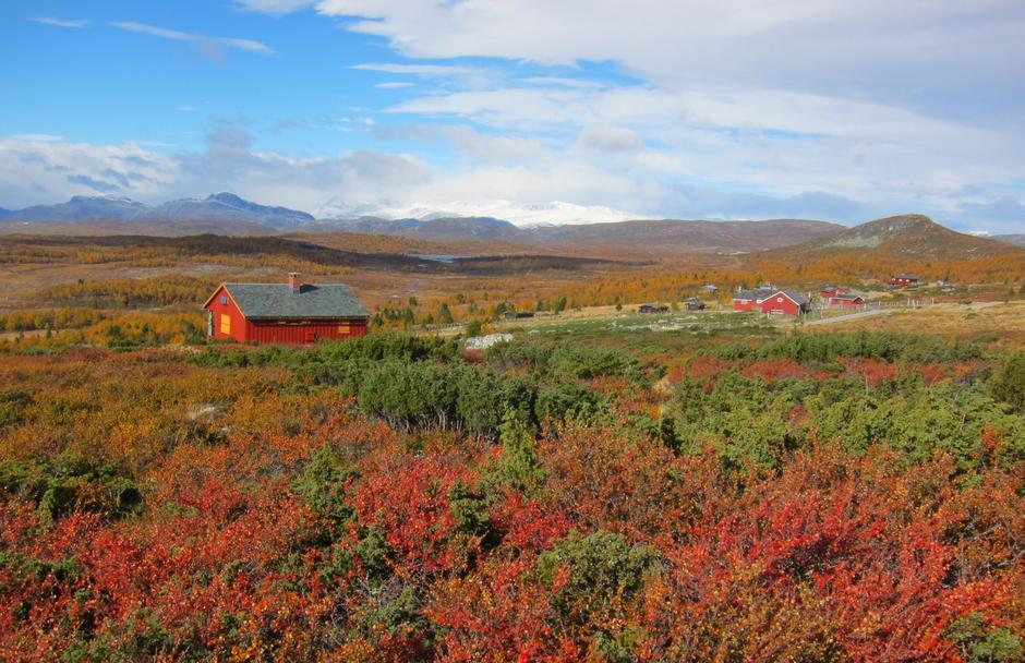 Mens vinteren nærmer seg kan vi glede oss over gode minner fra en fargesprakende høst
