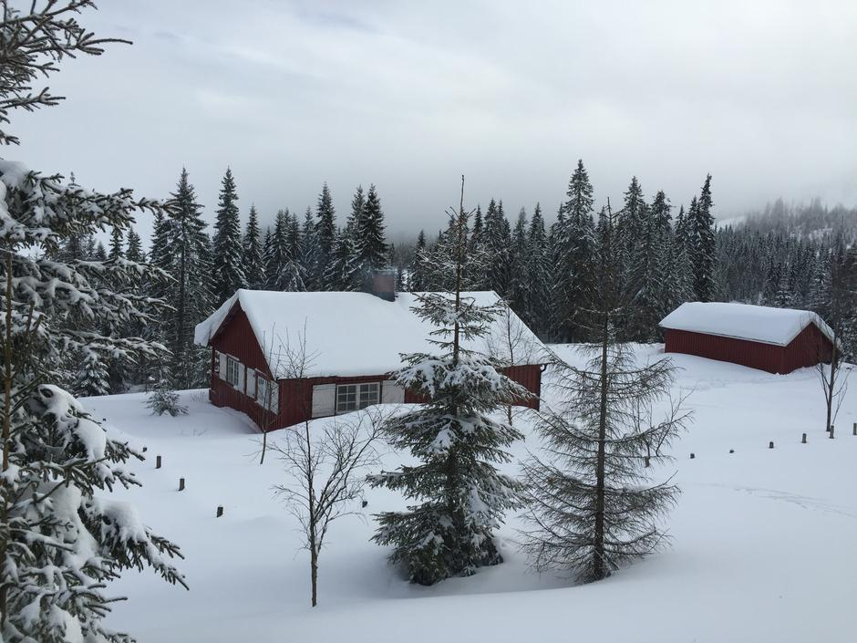 Vikkelihytta likker vakkert til på Nordåsen, ved Store Vikka. Dette er en ubetjent DNT hytte, som Nannestad Turlag har tilsyn med.