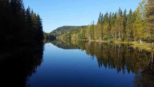 Tur i sørlige Finnemarka