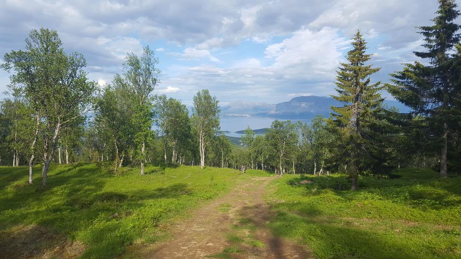 Utsikt fra veien fra Pevannet ned mot Harstadbotn.