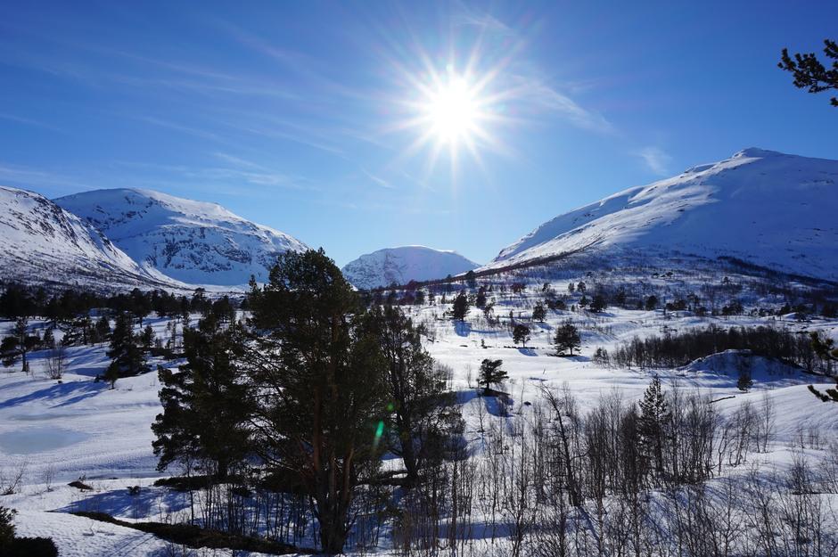 Mysubytta mot Surtbyttdalen 29. mars 2017