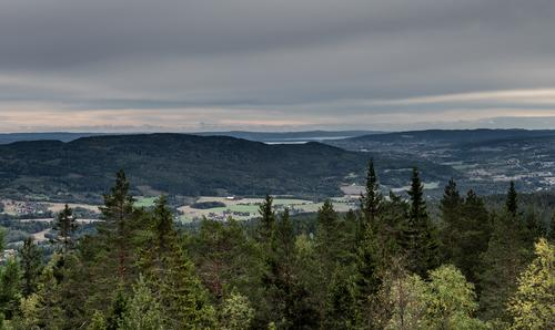 Utsikten fra Veslekollen er strålende!