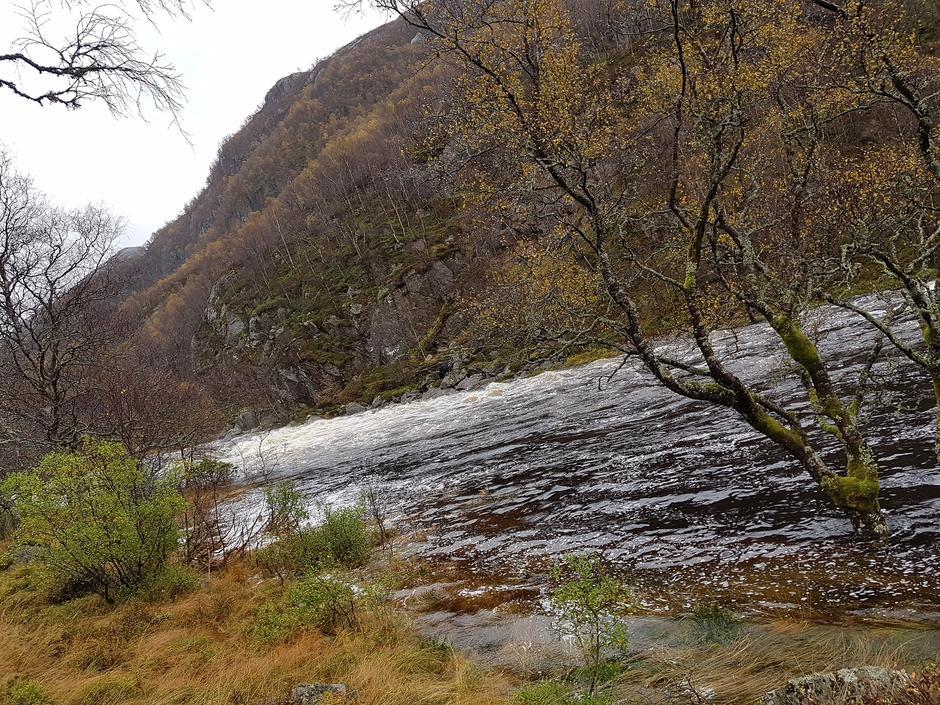 Mye nedbør om høsten øker vandstanden i alle vassdrag. Følg med på værmelding. Ikke kryss bekker som kan sette deg i fare. Kvitlen 1 okt 2017