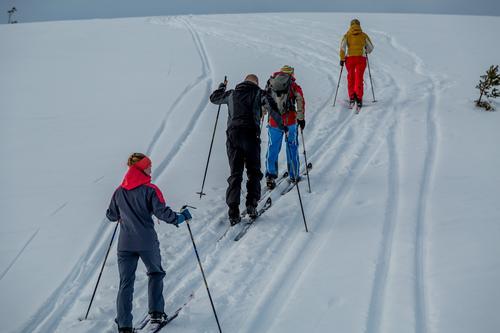 Ut på ski