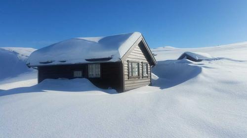 Vinter på Nipebu