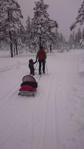 På ski i Krokskogen