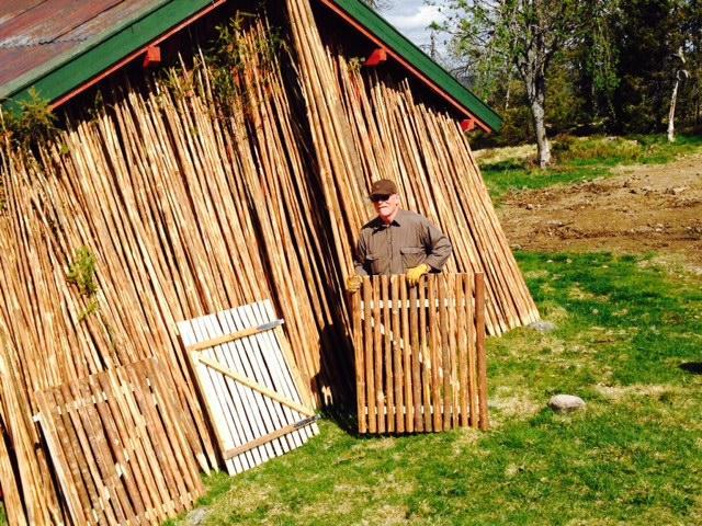 Staur er klare. Og Pål Jørgensen har laget 5 grinder også. De vil ønske turfolket velkommen inn!