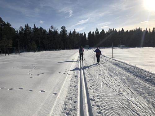 Skitur i sol
