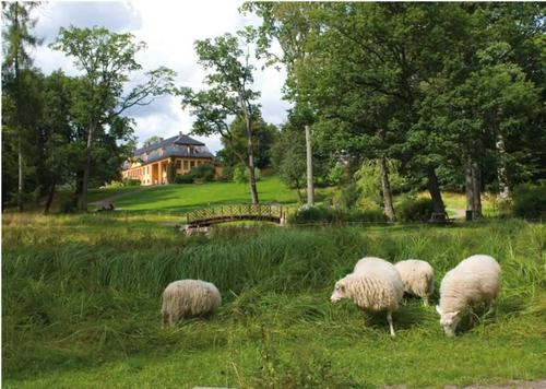Bogstad Gård har dyr på beite på sommeren og i fjøset på vinteren