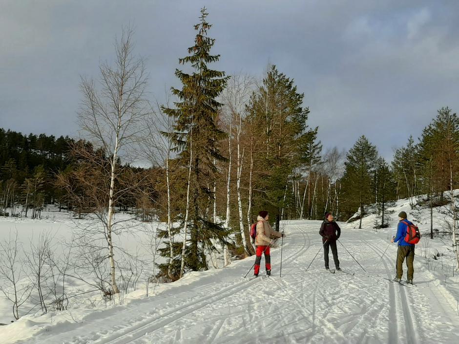 Løypene ved Kleivvann 1. februar 2020.