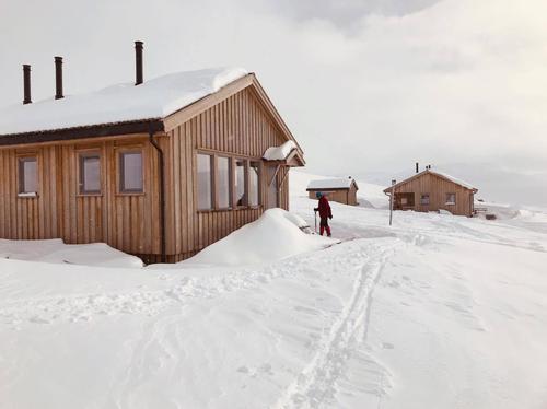 22.3.2019 Vekslende vær med nysnø i fjellet