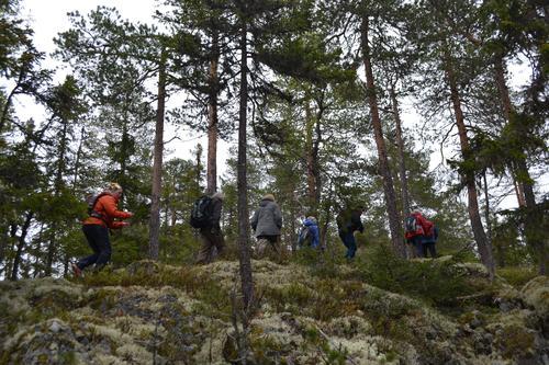 Søndagstur i skogen øst for Åsmarka
