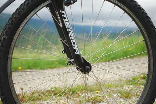 Sykkel i Grimsdalen
