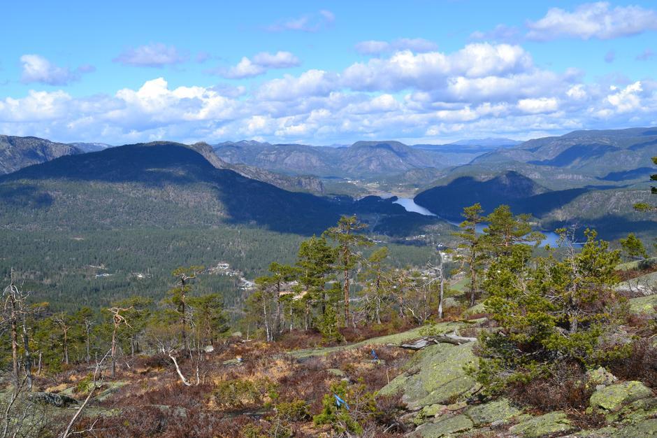 Stien opp mot Sandvikheia er bratt, men dette synet blir som en belønning underveis til toppen. En får fantastisk utsikt mot Bostrak og Bø i Tørdal.