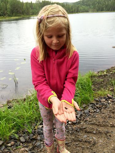 Fisketur i Eidskog, med noe attåt