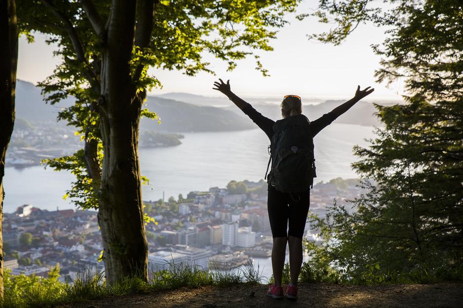 Byfjellene i Bergen, Fløyen.