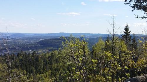 Utsikt fra Bergsåsen