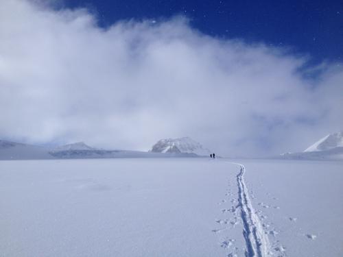 Toppturdager på Glitterheim i april - med vanlige fjellski!