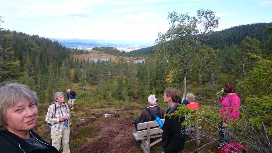 Fantastisk utsikt på vei ned fra Øyvindstjønna. Vi ser fra Melhus helt til Nidarosdomen!