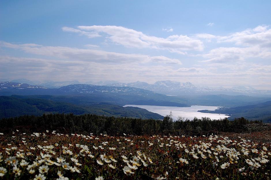 Utsikt fra Balsokken til Sagelvvatn