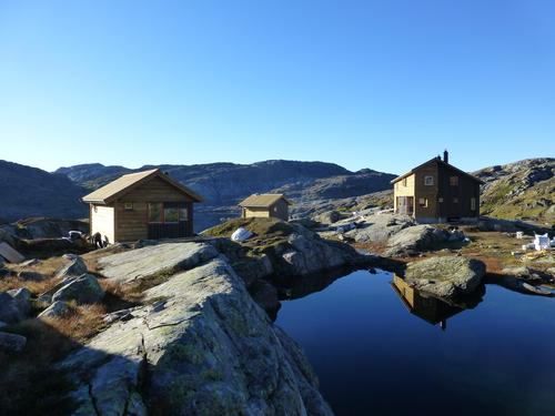 Gullhorgabu i Bergsdalsfjella
