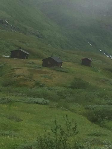 Hyttetunet i Stordalen