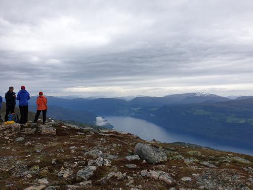 Snøfjellet (1006 moh)