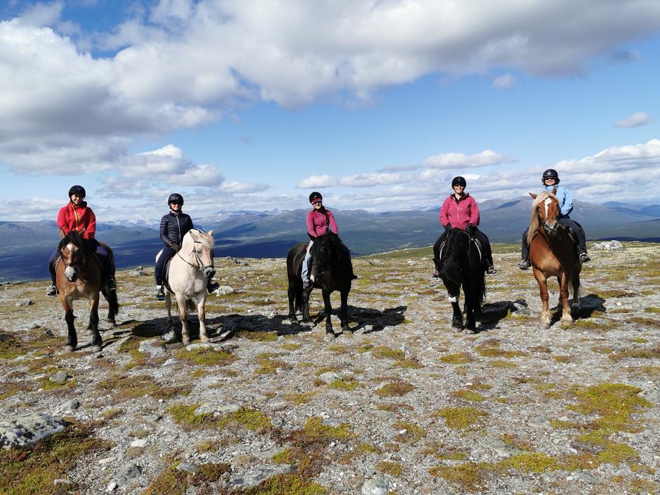 Fem hestedamer på toppen av Skardfjellet.