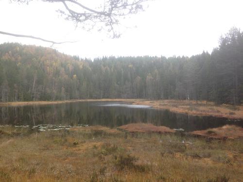 Trolsk vandring i Hurummarka