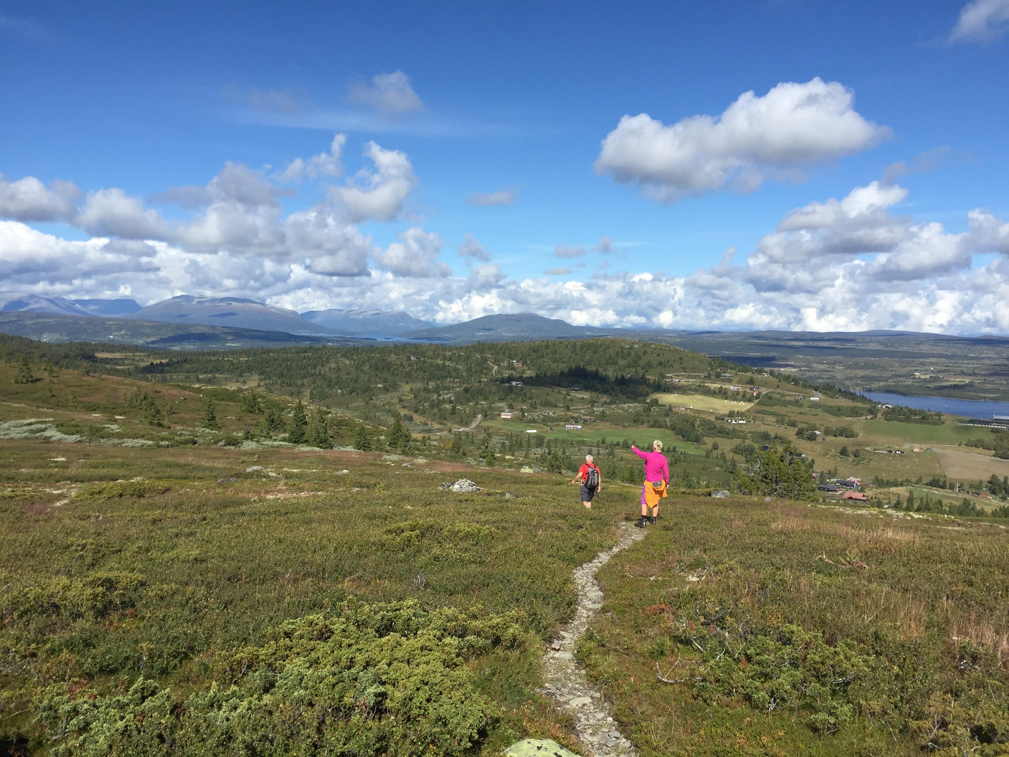 Lavterskeltur Til Golsfjellet Turer Og Aktiviteter Holmestrand