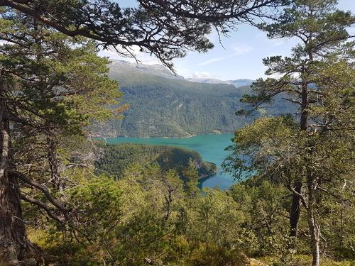 Utsyn over fjorden