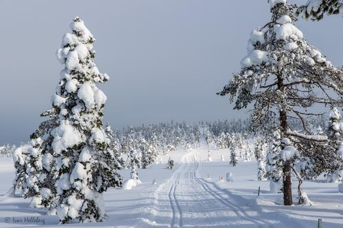 Når kommer skiføret?