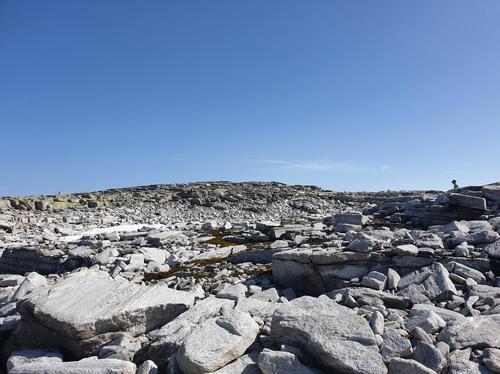 Platået aust for toppen på Blåfjellet
