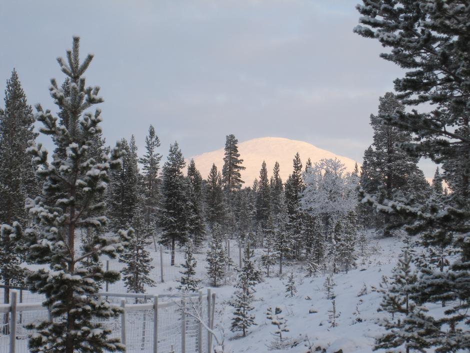 Stor-Svuku tatt tidlig på vinteren. Slik kan det være i romjula.