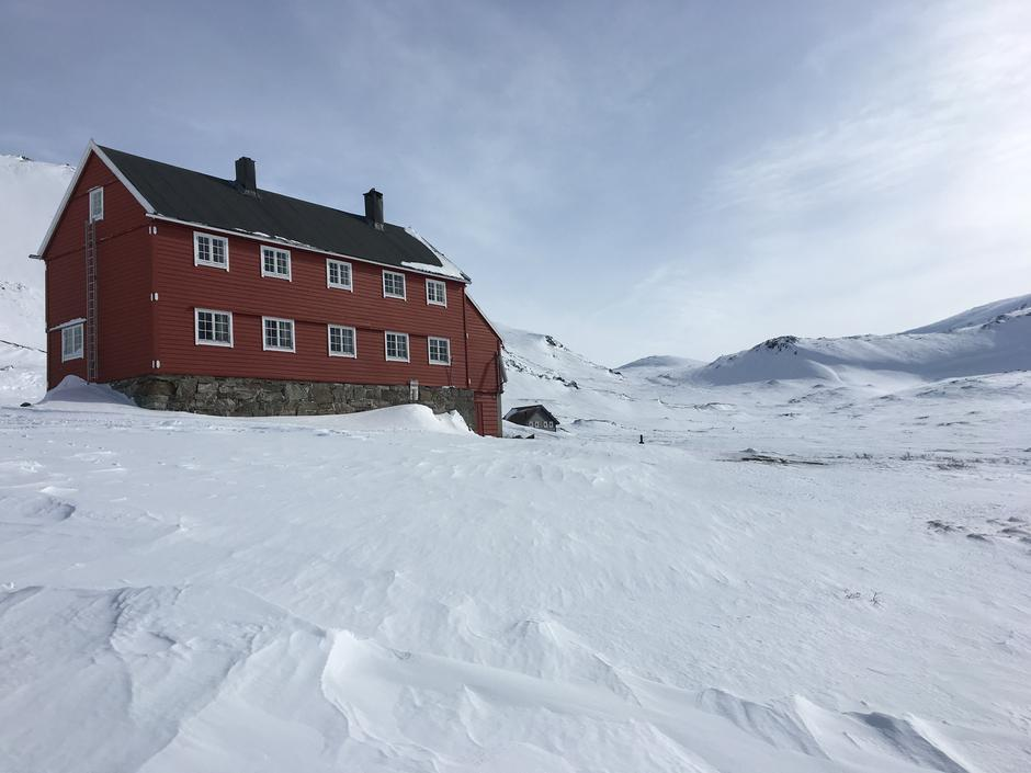 Onsdag 14.3: Stavali på Hardangervidda vest. Lite snø og hardt føre.