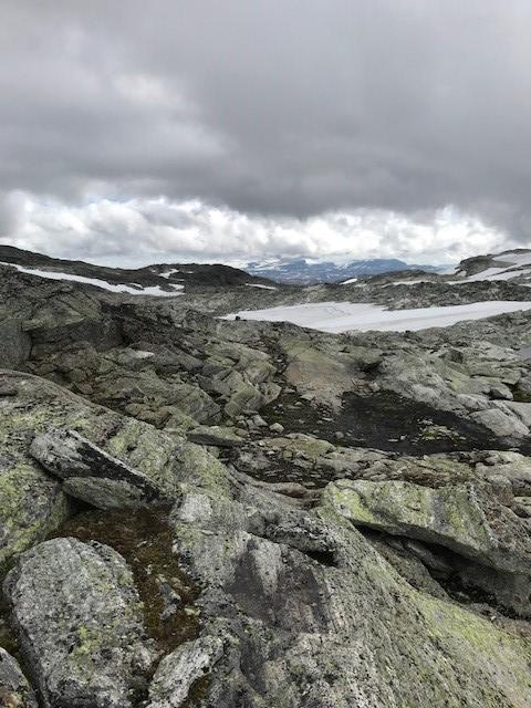Høyeste punkt på ruten er ca. 1540 moh. Enkelt å forsere Vossaskavlen i fint vær. Ikke anbefalt med dårlig sikt.