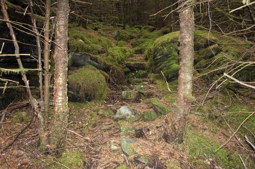 Seniortur i Fjellparken og området rundt