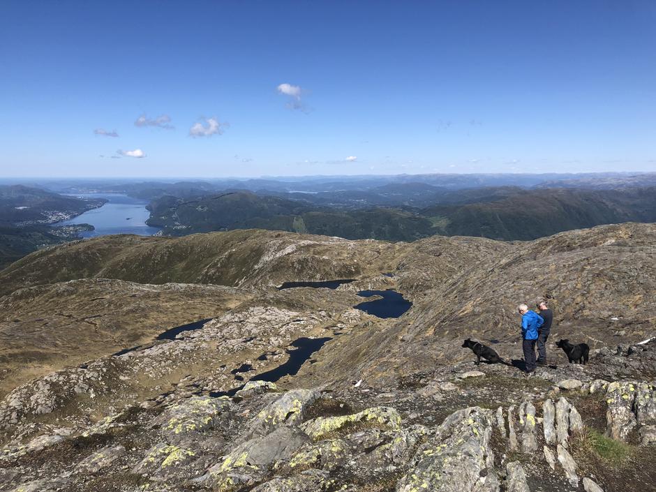 Utsikt nordover fra Gullfjelltoppen
